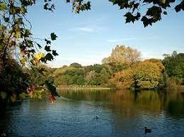英国徒步活动 | Hampstead Heath 环形徒步半日游